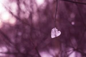 Frozen heart by Glatze mit Kamera