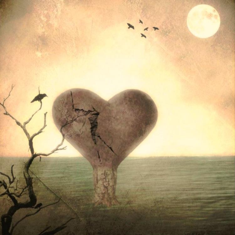 Corazón tan grande... CC por Delphine Devos