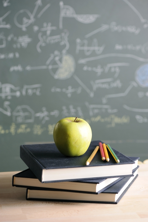 What I learnt teaching at school. Shutterstock photo.