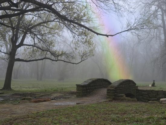 The rainbow of pain. Shutterstoc kphoto.